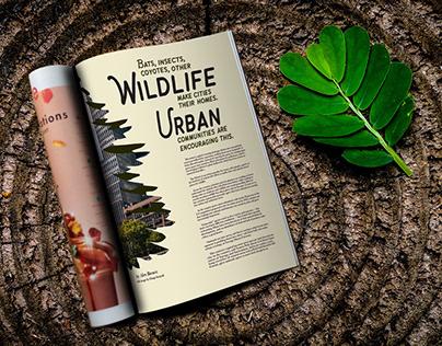 Wildlife Magazine Article