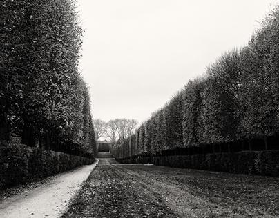 Serenity in the gardens of Versailles