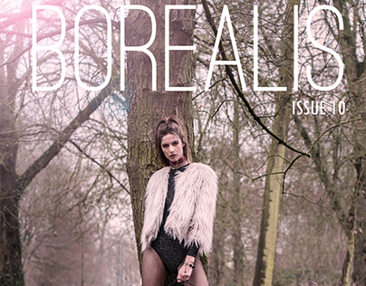 The Hunt For Borealis Magazine
