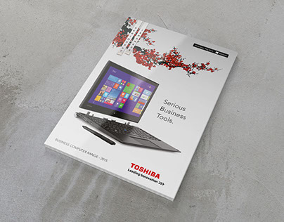 Toshiba Product Brochures & Matrix