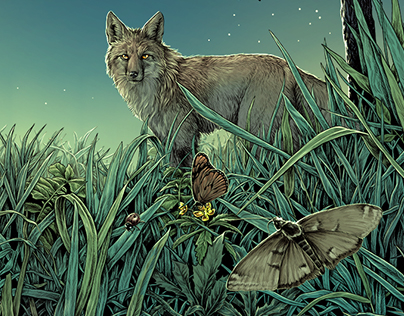Meadow - label illustration