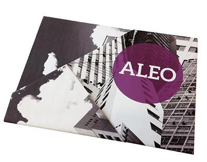 [Academic Work] ALEO Poster