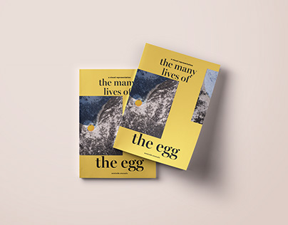 The many lives of the Egg