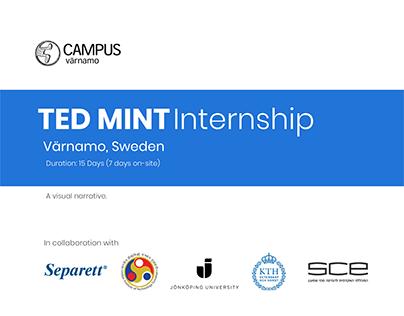 TED MINT Internship   UX & Product Design