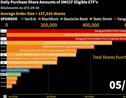 Racing Bar Charts for ETF purchases