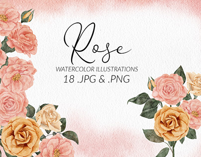 Rose Flower Watercolor Illustration Set