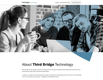 Third Bridge Technology Website
