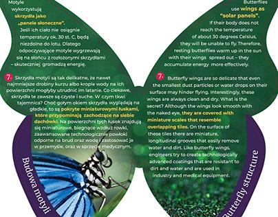 Information boards for Butterfly Garden