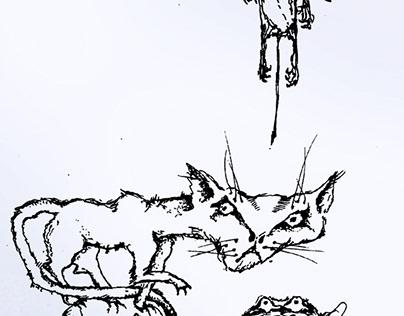 FAMILY of WILD ANIMALS graphic arts