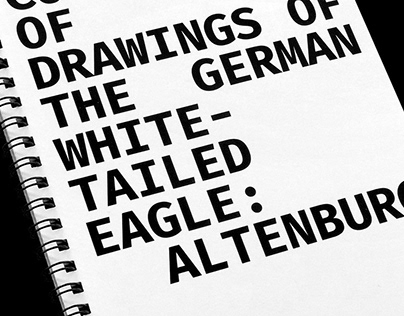 A Collection of Drawings of the German White-tailed …