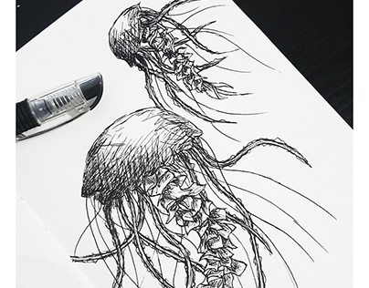 Drawing | Sketching