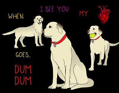 Dum Dum the Labrador Retriever