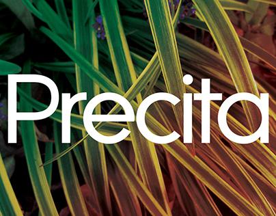 Precita (Font Design)