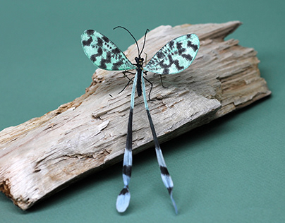 Spoonwing Paper Sculpture