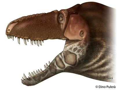 Paleo Art - dinosaur illustration