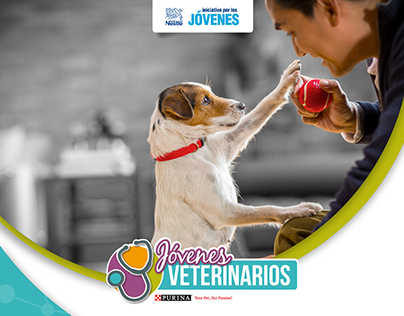 Brand construction for Purina´s Young Veterinarians