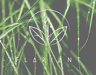 Flariant Brand Identity