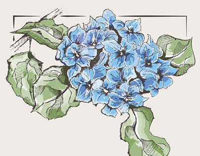 French hydrangea drawing and wedding invitation