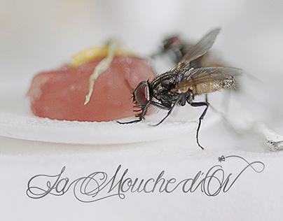 CANALE NOVE / Cucine da Incubo - La Mouche d'Or