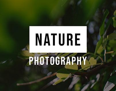 Photography - NATURE SET