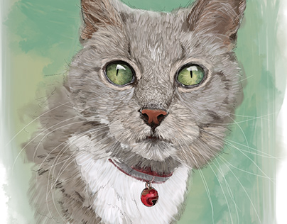 Digitally drawn & hand-painted pet portraits