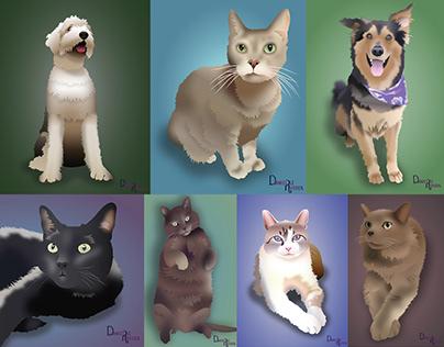 Pet Portraits