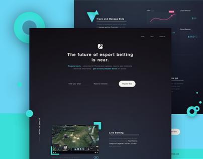 Landing Page - Esports
