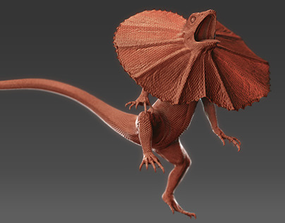 Running Frilled-Neck Lizard