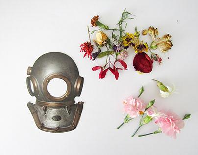 Flower Divers