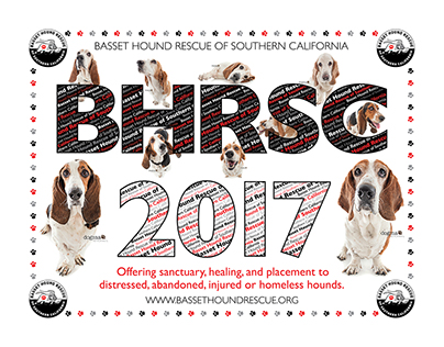 Basset Hound Rescue of Southern California Calendar