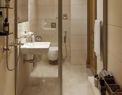 Private house / Bathroom