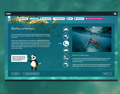 WWF Junior Website Konzept