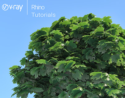 VRAY FOR RHINO 2SIDED MATERIALS