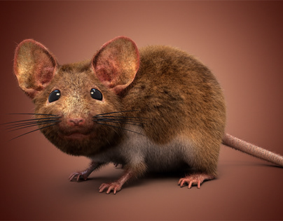 Mouse with Fur