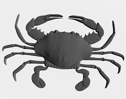 3D relief of a Crab