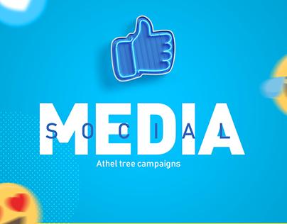 Athel tree | social media