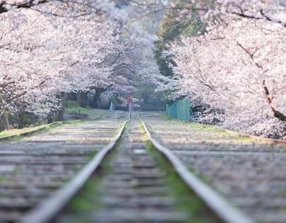 Railway spring road