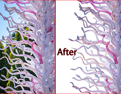 clipping Path & Background Removal Service