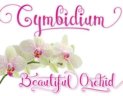Cymbidium Script Font