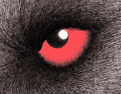 Dans les yeux, book, Gautier languereau 2017
