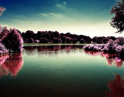 Infrared Landscapes and Nature, Cooper River Park, NJ
