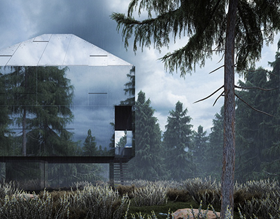 the woods - private house in an austrian forrest