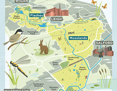 Carbon Landscape Map for the Wildlife Trust
