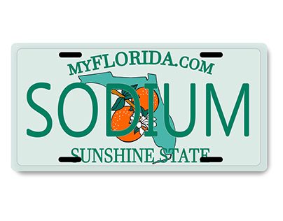Custom License Plate Illustrated in AI
