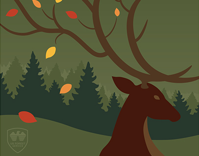 Bighorn National Forest Fall Festival