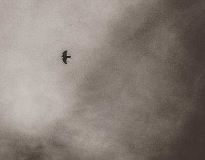 Alone (II).