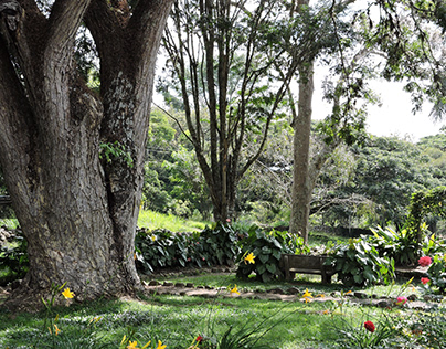 Fotografía - Hacienda la María