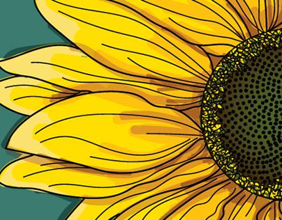 Sunflower Digital Illustration