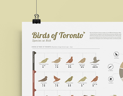 Birds of Toronto: Species at Risk