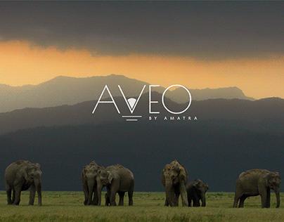 AVEO Hotels | Branding